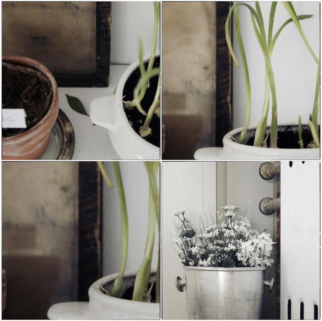 l atelier de la sardine d coration. Black Bedroom Furniture Sets. Home Design Ideas